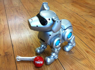 Robot Dog