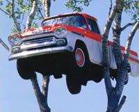 Truck in tree