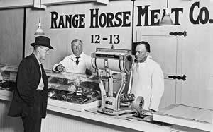 Horse meat