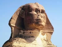 The Mullet - sphinx
