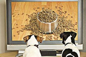 Nestle Purina Advertising Gimmicks