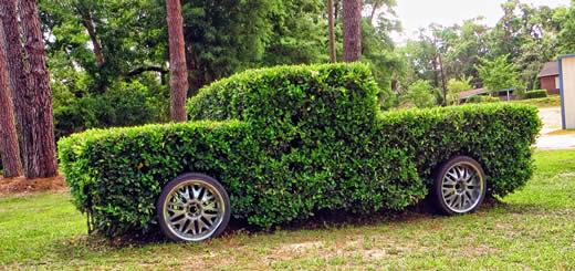 grass truck