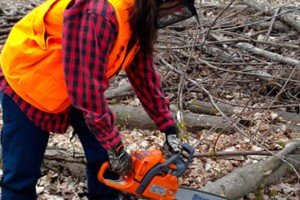 Will's Thoughts | Movember And Chainsaw Cathie