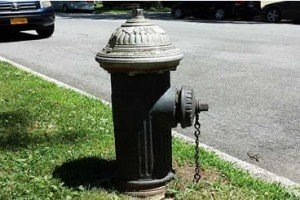 True or False?  A Man Was Killed By Flying 200-Pound Fire Hydrant