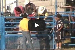 Bull Riding Prince George PGX Saturday August 11, 2012 [VIDEO]