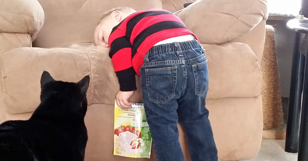 Learned From Kids - Little Boy Pouting With Black Cat