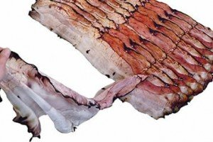Bacon Scarf Will Have You Aching For Bacon