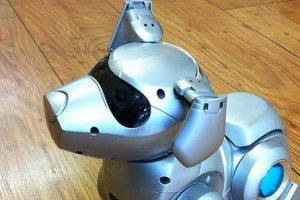 3 Of The Most Amazing Robot Pets