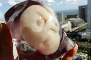 Print A 3D Model Of Your Unborn Baby