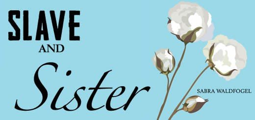 Slave And Sister By Sabra Waldfogel Review