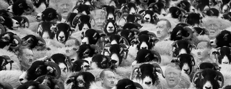 sheep hitler trump