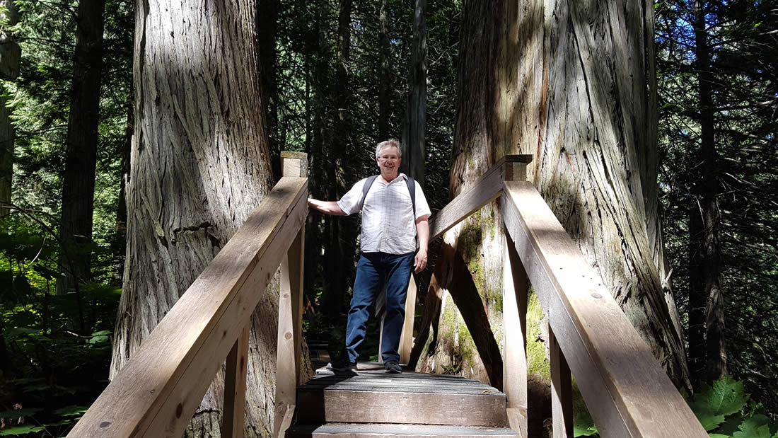 ancient-forest-prince-george-british-columbia-006