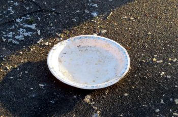 Royal Chinet Paper Plate In its Natural Habitat