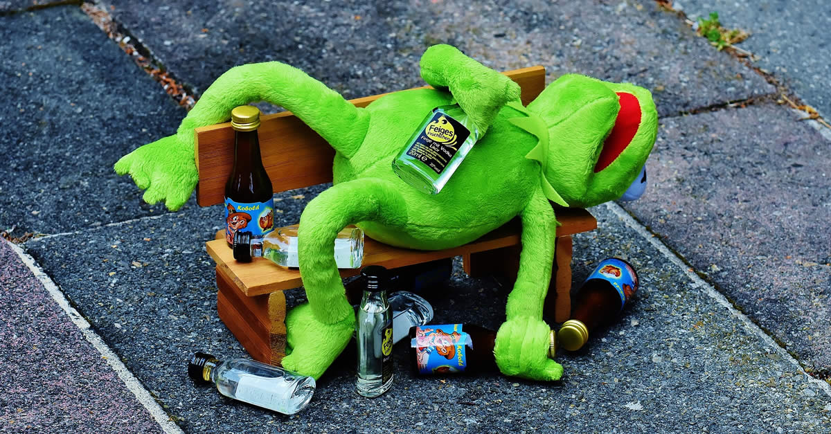 Kermit The Frog Passed Out From Drinking Alcohol