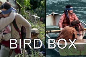 Watching Bird Box Is Like Having Sex That Ends Before It Should