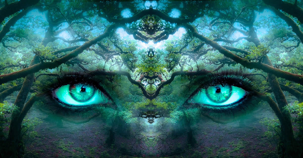 Spirituality Dreams Eyes In Forrest
