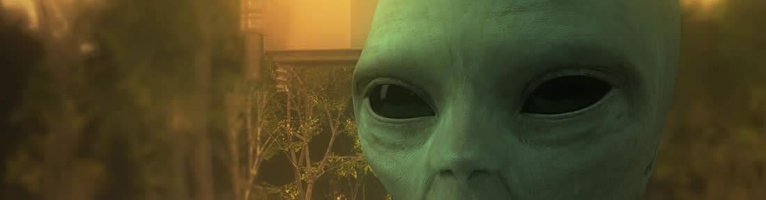 Alien UFO Green Big Black Eyes