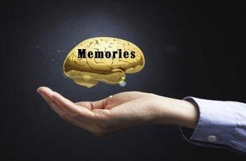 Memories Open Hand With Gold Brain